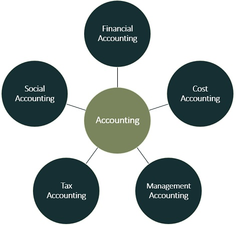 purpose of accountant